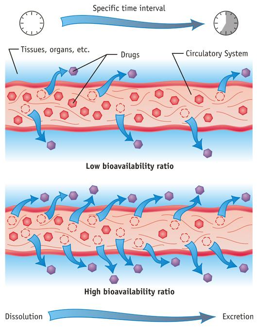 Drug Bioavailability Ratio Medical Diagram