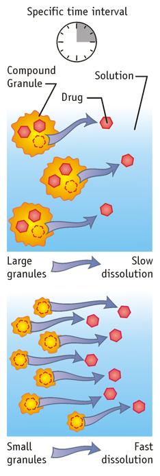 Drug Dissolution Medical Diagram